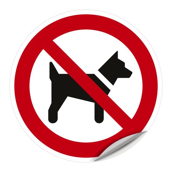 Mitführen von Hunden verboten P021